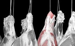 Fleischindustrie Übersicht